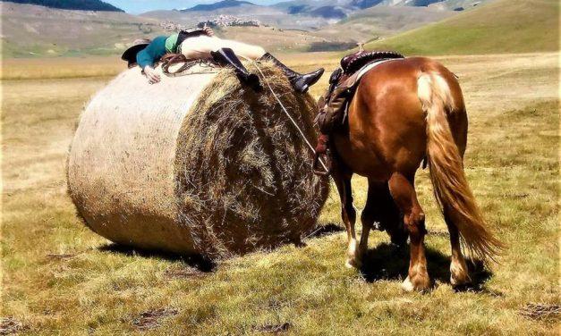 Domenica primo Ottobre , passeggiata di tre ore a cavallo nei dintorni di Norcia