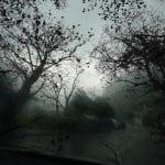 arte natura e cambiamenti in una foto